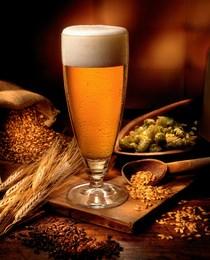 Pivo-prirodni sastav 2 (Kopiraj)