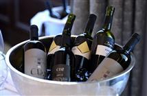Istria Gourmet Festival 2014-vino