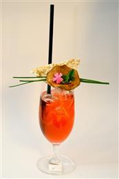 Vigor Badel Cup 15-pobjednički cocktail