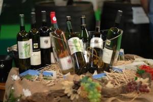 47. izložba vina kontinentalne Hrvatske