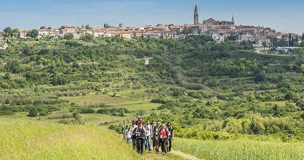 Istria Wine and Walk web