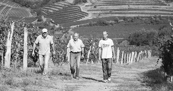 Jakoncic vina u rukama jedne obitelji od 1847.godine.