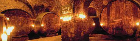 Najstarija austrijska vinarija Nikolaihof gostuje u Zagrebu
